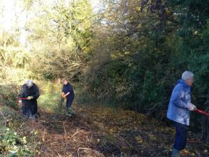 The rest of us cleared brambles and took away the waste